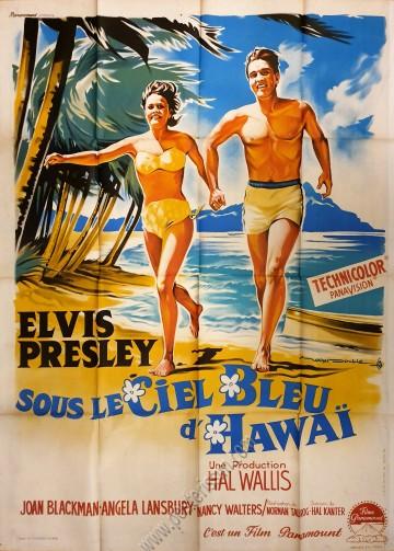 Sous le ciel bleu d'Hawaï